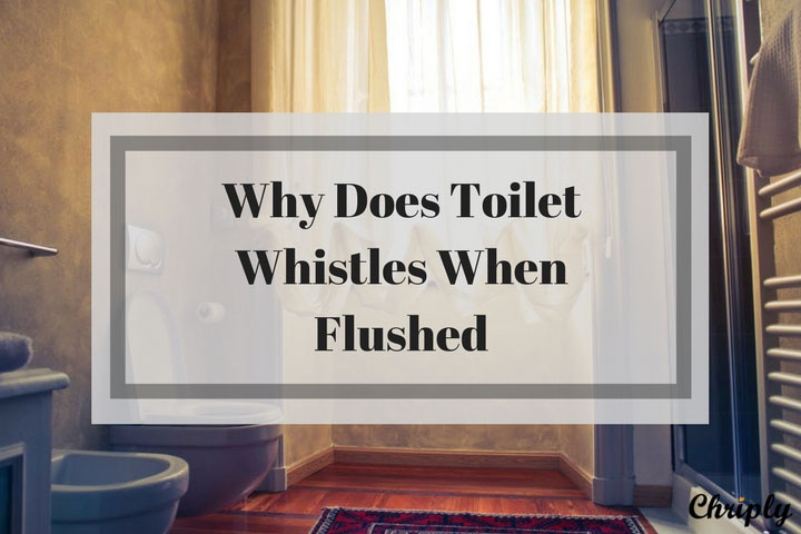 Why Does Toilet Whistles When Flushed
